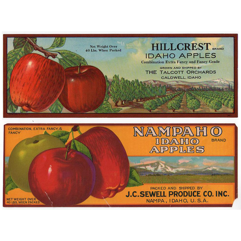 Vintage, Fruit Crate Labels for Apples - Two with Great Graphics
