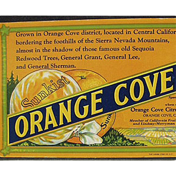 Vintage, Sunkist Advertising Ink Blotter - Orange Cove Fruits