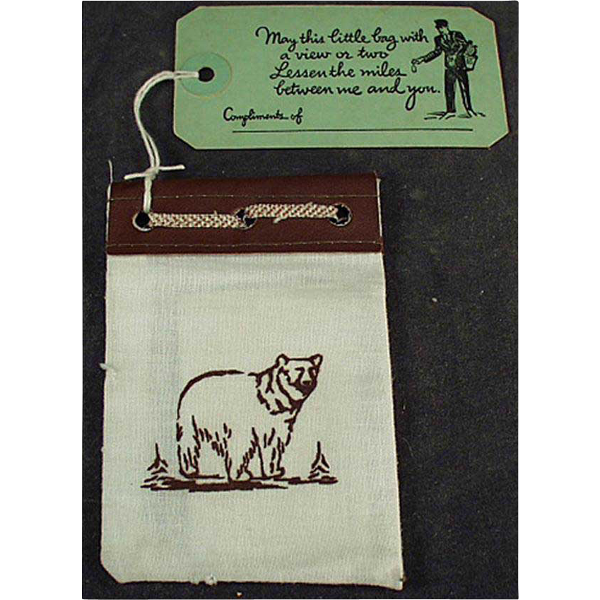 Vintage Yellowstone Souvenir - Promotional Mailer with Photos