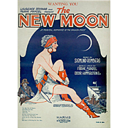 Vintage Sheet Music - Wanting You from The New Moon - 1928 - Colorful Graphics