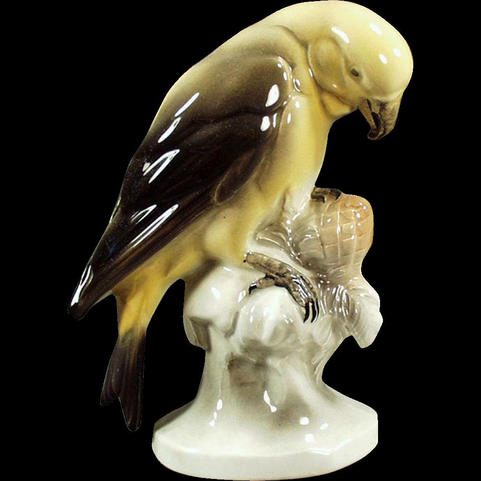 Vintage Porcelain Parakeet Figurine - Hertwig of Germany