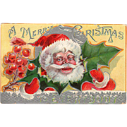 Vintage Christmas Postcard – Jolly St. Nicolas and Holly