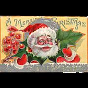 Vintage Christmas Postcard – Jolly St. Nicolas and Holly