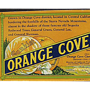 Vintage Sunkist Advertising - Old Ink Blotter - Orange Cove Fruits