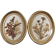 Vintage Wall Hangings - Framed Dried Flower Bouquets - Pair