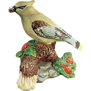 Vintage Porcelain Bisque Figurine - Old Cedar Waxwing Bird - Very Pretty