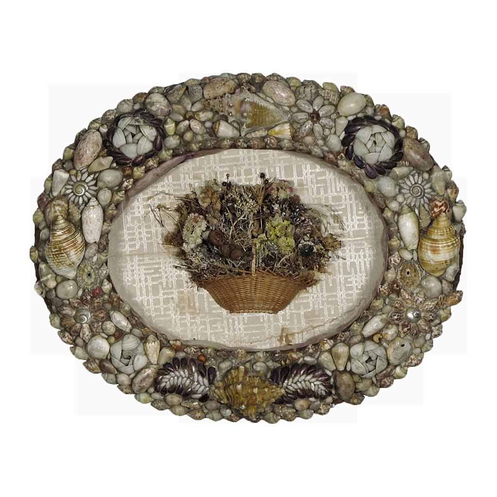Antique Folk Art Shell Frame And Seaweed Basket Shadowbox   Early 19th C   Sailoru0027s  Valentine   Folk Art