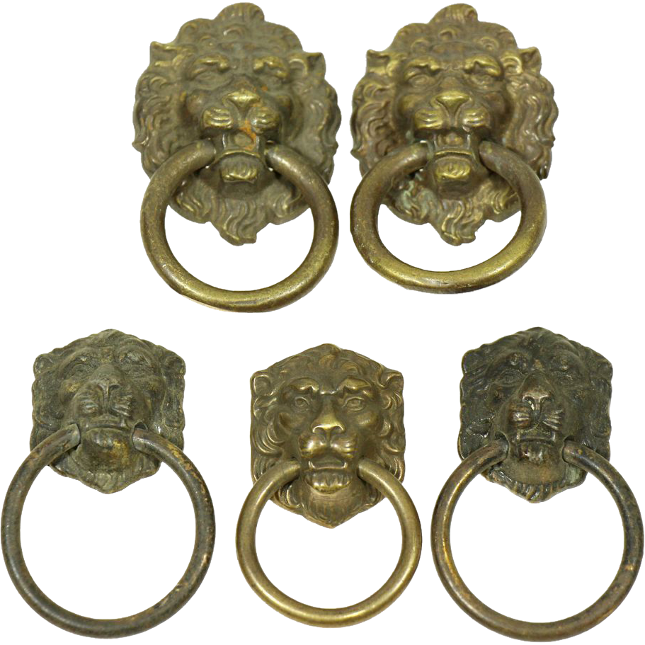 Bronze small lion head pulls set