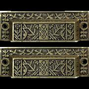 Pair of Ornate Aesthetic Bin Pulls