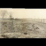 1890s an Osborne Special Photo