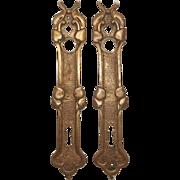 Antique French Bronze Door Plates