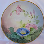 Vintage D'Arcy's Hand Painted Morning Glory Plate