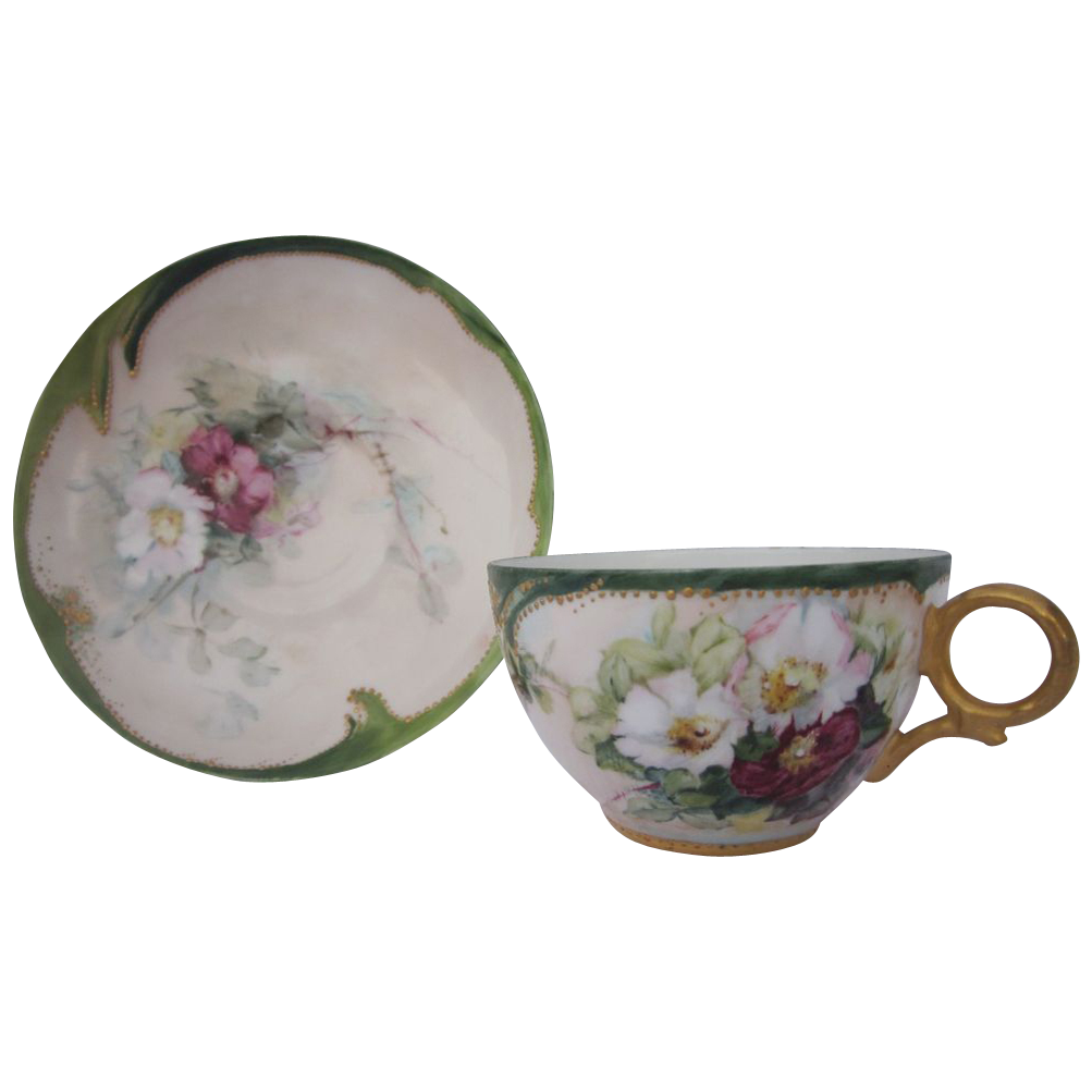 Haviland Limoges Hand Painted Cup & Saucer Set