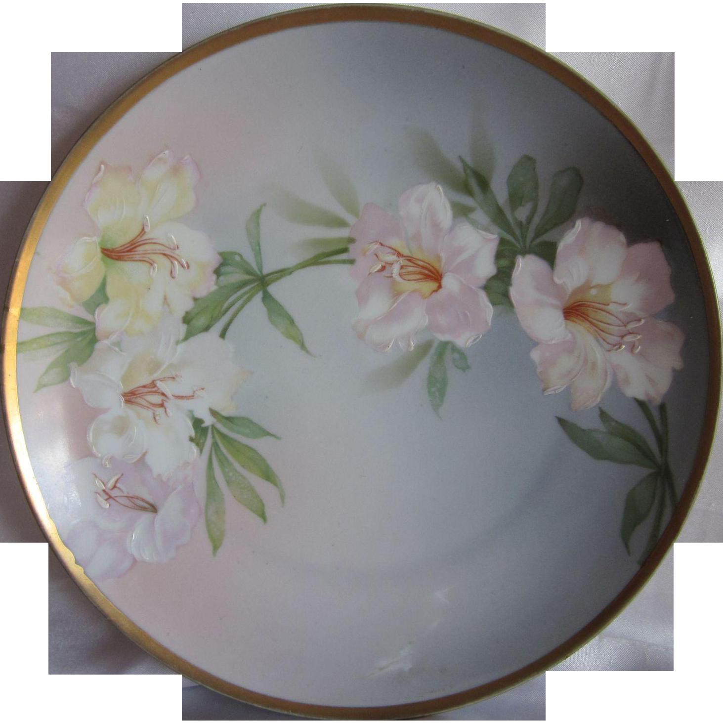 Old MZ Austria Flowers Plate