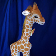 Steiff Giraffe 1950's with ear and chest buttons