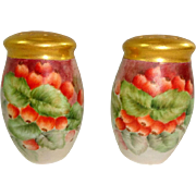 Hand Painted Currants Artist Signed Bavaria Salt and Pepper Shakers