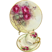 Limoges Plate Hand Painted Roses Signed Mint M. Hood with German Cup Saucer