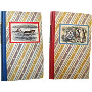 Alices Adventures In Wonderland and Through The Looking Glass Book Set - Lewis Carroll - Classic Childrens Books - Childrens Literature