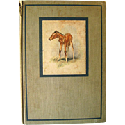 The Red Pony By John Steinbeck - First Illustrated Edition - Wesley Dennis - First Edition Childrens Book - Classic Kids Book - Horse Book