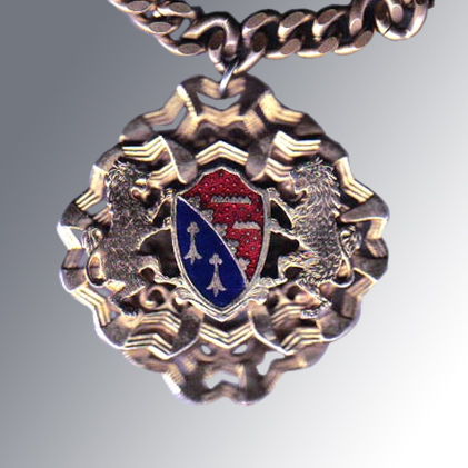 Coat of Arms Necklace - Vintage Heraldic Necklace - Family Crest Necklace - Renaissance Jewelry