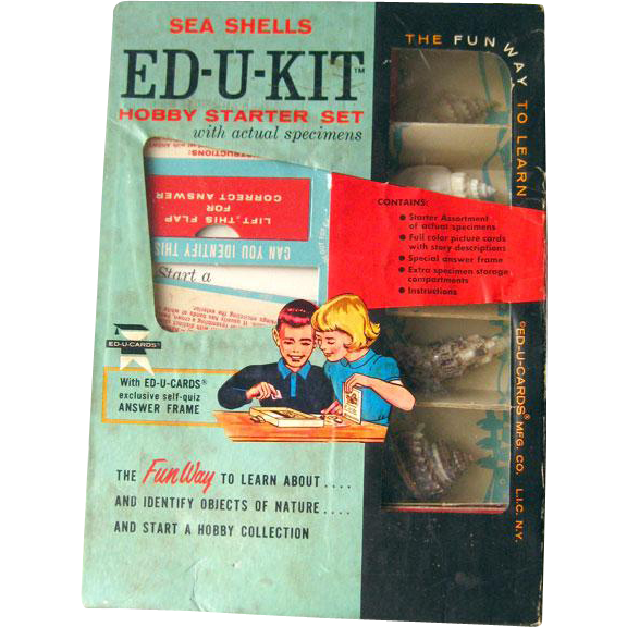 Vintage ED-U-KIT Hobby Starter Set Sea Shells / Educational Toy / Ed-U-Cards Sea Shells Complete With Actual Specimens