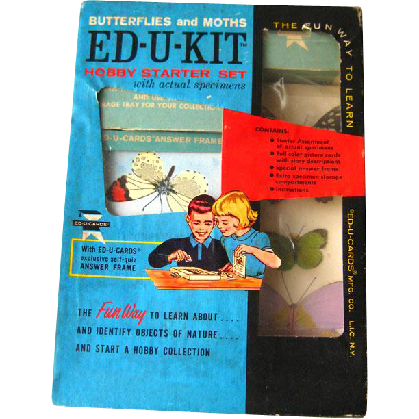 Vintage ED-U-KIT Hobby Starter Set Butterfly and Moths / Educational Toy / Ed-U-Cards Butterfly and Moth Complete With Actual Specimens