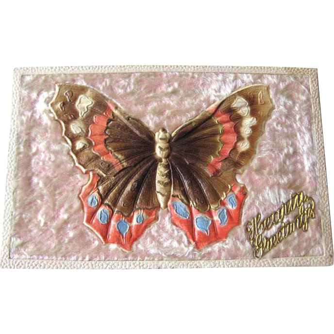 Hearty Greetings Butterly Postcard With Flocking - Embossed Post Card - German Postcard - Vintage Ephemera