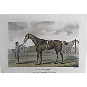 "Lithograph Print of John Scott engraving of horse "" Bennington"" from 1796 : circa 1872"