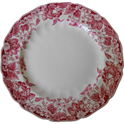 Dinner Plate in Strawberry Fair by Johnson Brothers (4)