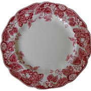 Bread and Butter plate in Strawberry Fair by Johnson Brothers