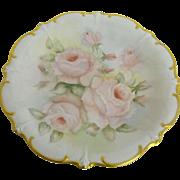 Schumann hand painted platter   Circa 1959