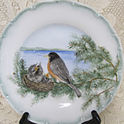 Decorative  Cabinet  Plate - Robins - Haaz & Cajzek - Red Tag Sale Item