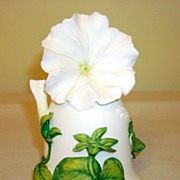 White Cascade Petunia Bell By Jeanne Holgate