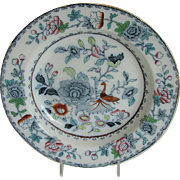 Ashworth Mason Ironstone Plate, India Grasshopper, Antique Early 20th C