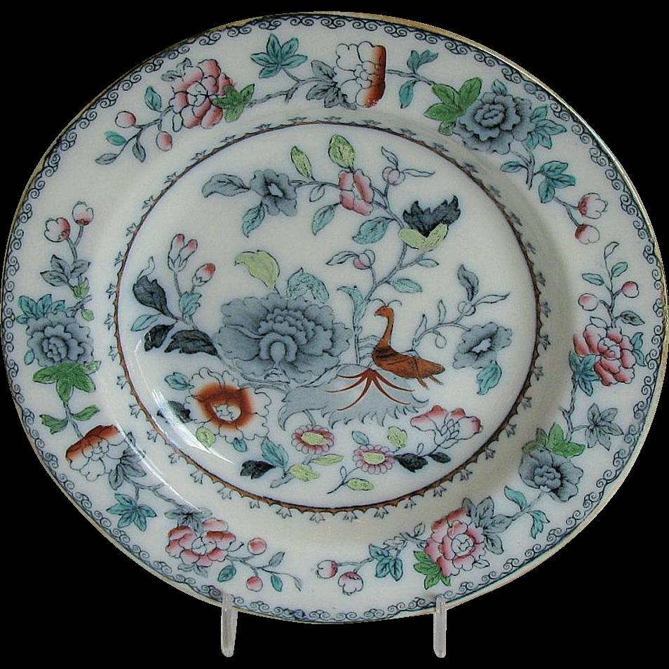 Ashworth/ Mason's Ironstone Plate, India Grasshopper, Antique Early 20th C