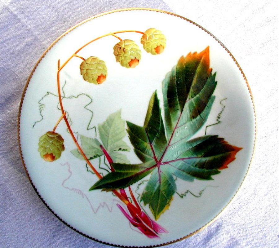 Botanical Cabinet Plate, Beautifully Hand Painted Hops, Antique 19th C Porcelain