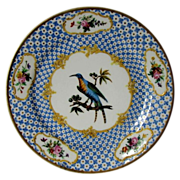 Early 19th C Paris Porcelain Ornithological Plate, Exotic Bird, Raised Gold