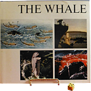 """ The Whale "", 1968 Interntionally Acclaimed, Sweden, The Definitive Book on Whales"