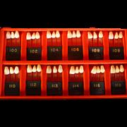 Vintage Artificial Teeth Display, Dentist's Sample,