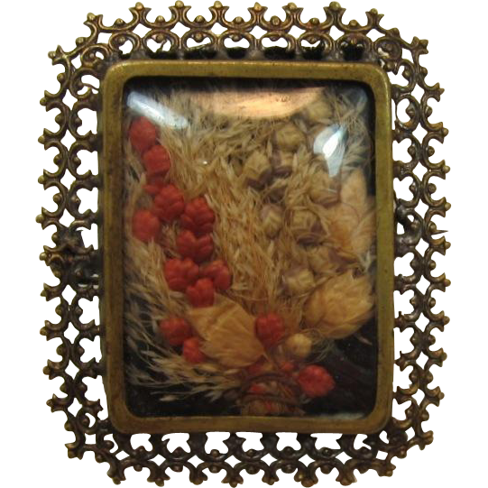 Old C-Clasp Brass Picture Frame Brooch with Dried Foliage