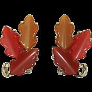 Lisner Fall Colors Moonglow Leaf Earrings