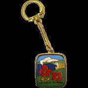 U.S. Virgin Islands Music Box on Key Ring