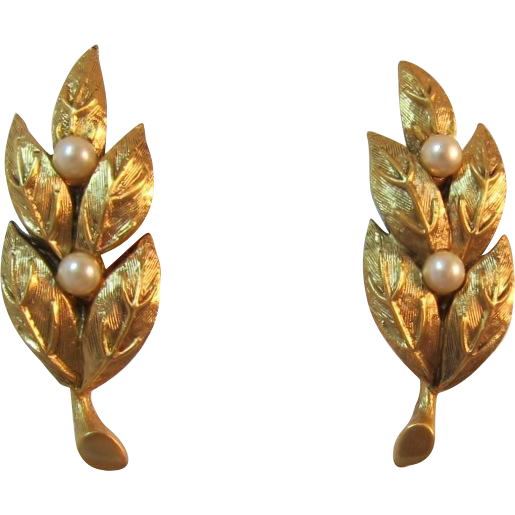 Tortolani Gold-tone and Imitation Pearl Earrings