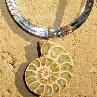 Perfect Ammonite Fossil Pendant with Chain