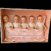 "The ""Fischer Quintuplets"" in Original Box Madame Alexander c.1964  Rare Set"