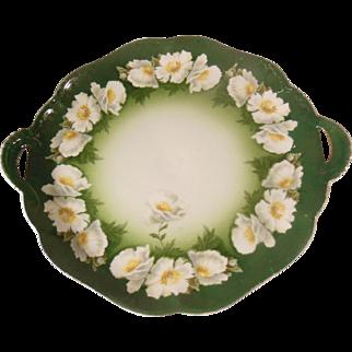 Rosenthal Bavaria Green Floral Handled Cake Plate