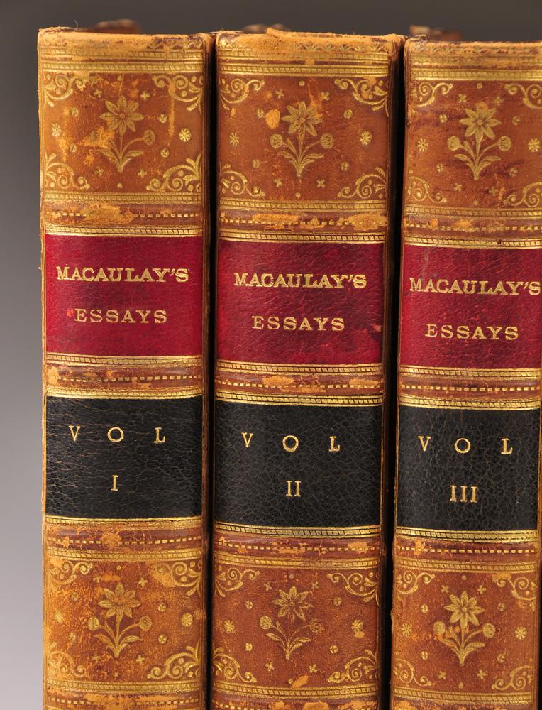 Macaulay essay
