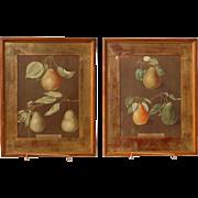 Pair of George Brookshaw Pomona Prints