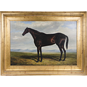 Vintage Oil Painting On Canvas Of Thoroughbred Horse