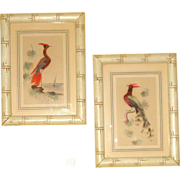 Pr. Watercolor & Real Feathers Bird Art: Asian Style: Matted, Framed, & Under Glass